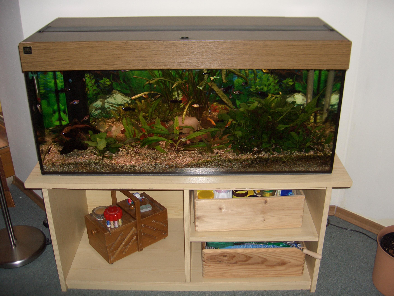 tisch aquarium selber bauen design inspiration f r ihren heimtisch. Black Bedroom Furniture Sets. Home Design Ideas